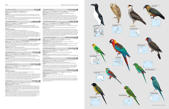 Illustrated Checklist of the Birds of the World - Extinct Species