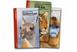 Lynx Illustrated Checklists Collection