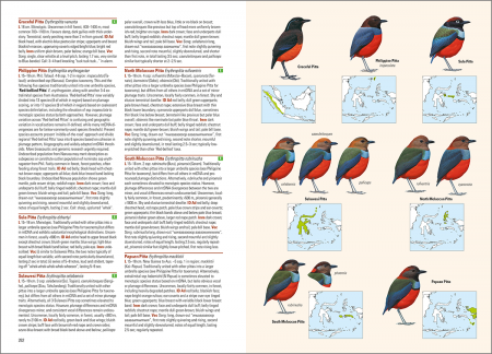 Birds of the Indonesian Archipelago_2nd edition_sample_passerines_page 262