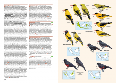 Birds of the Indonesian Archipelago_2nd edition_sample_passerines_page 280