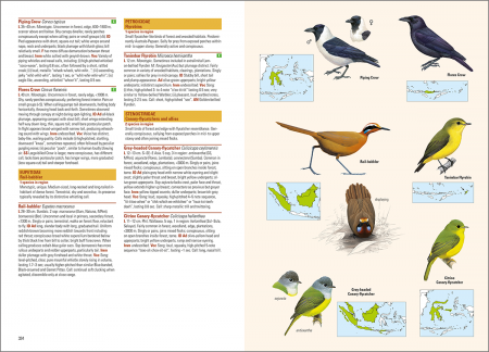 Birds of the Indonesian Archipelago_2nd edition_sample_passerines_page 334