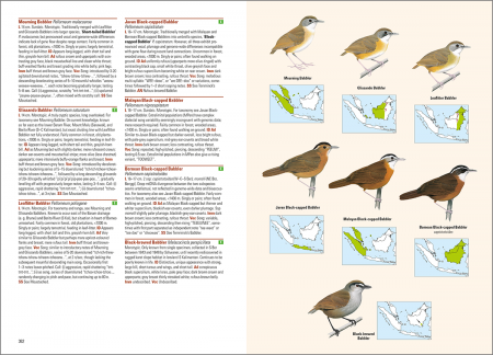 Birds of the Indonesian Archipelago_2nd edition_sample_passerines_page 362