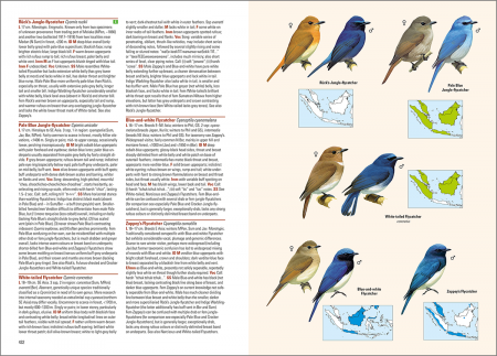 Birds of the Indonesian Archipelago_2nd edition_sample_passerines_page 432