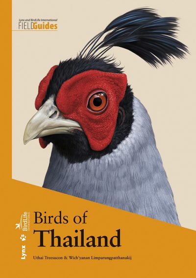 Birds of Thailand book cover image