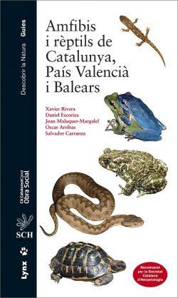 Amfibis i rèptils de Catalunya, País Valencià i Balears book cover image