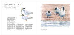 Entre Mar y Tierra / Between Sea and Land sample page