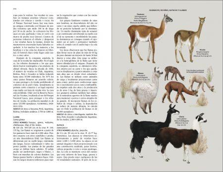 Flora y fauna de Chile. Guía de identificación sample page