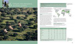 Farmland Birds across the World sample page